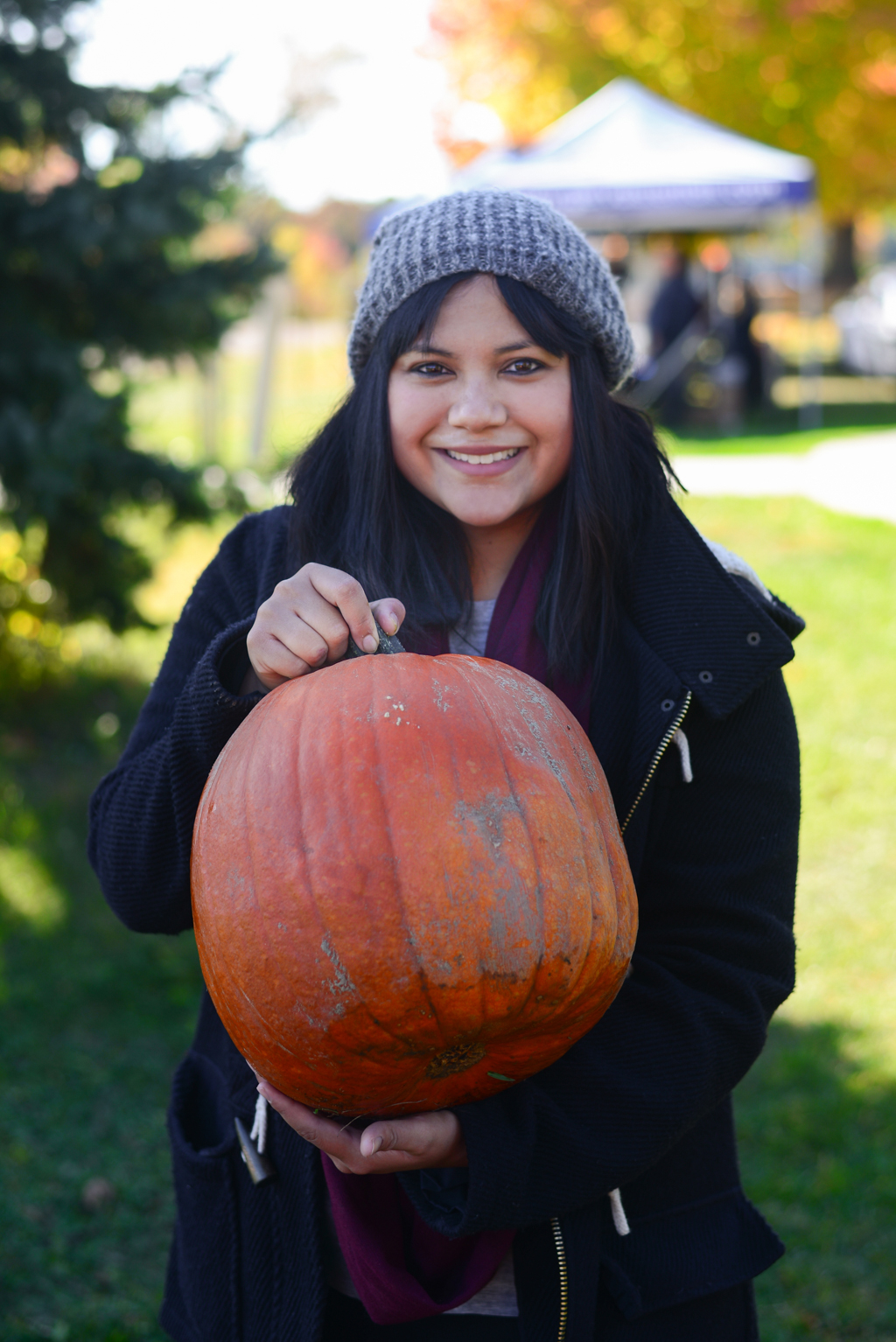Ajax Pumpkinville